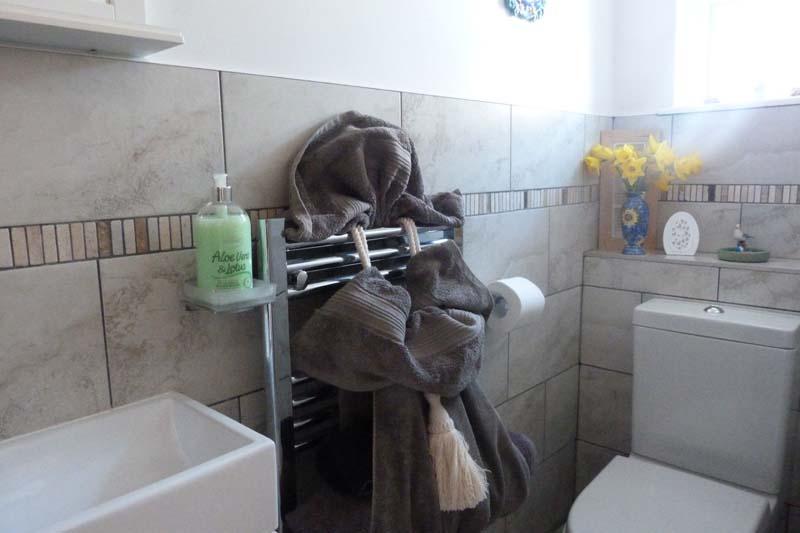 Falcon Mews Grooms Cottage toilet 2