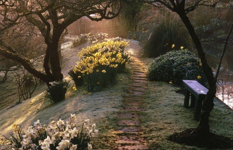 Docton Mill Gardens