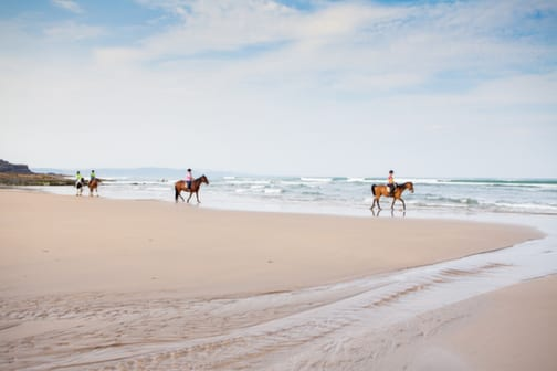 Horse Riding on the Beach in Bude