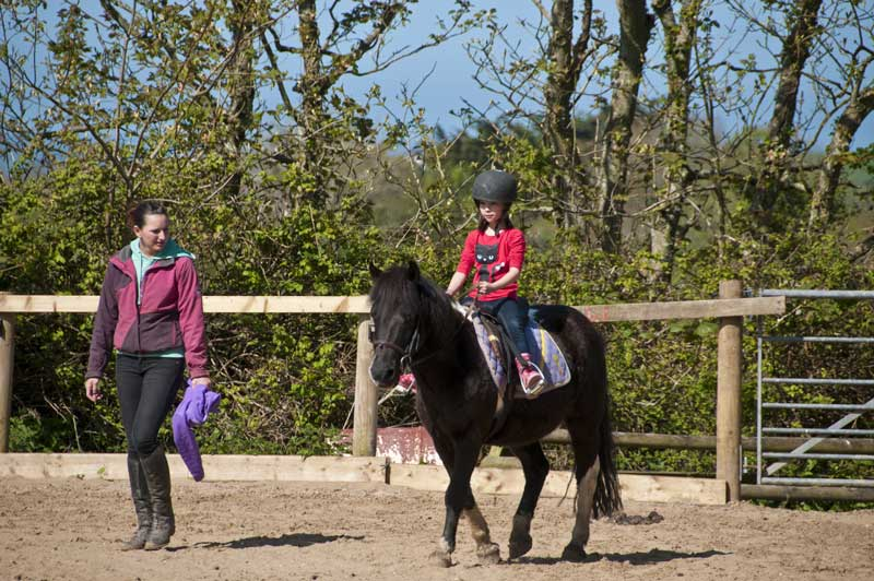 General Broomhill Manor Image riding school